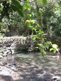 hot springs_termy